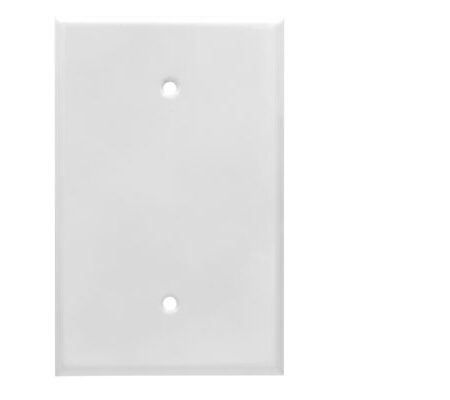 1 Gang Jumbo Smooth Metal Blank Wall Plate