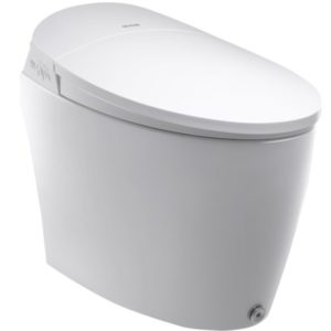 Tankless Intelligent Toilet